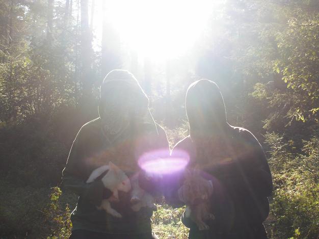 liberacion de conejos mexico