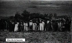 mapuches en accion